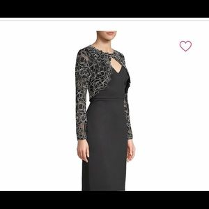 Tadashi Shoji beautiful long sleeve lace dress